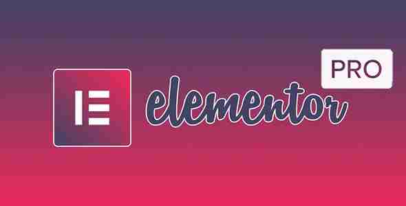 Elementor page builder pro with licence code