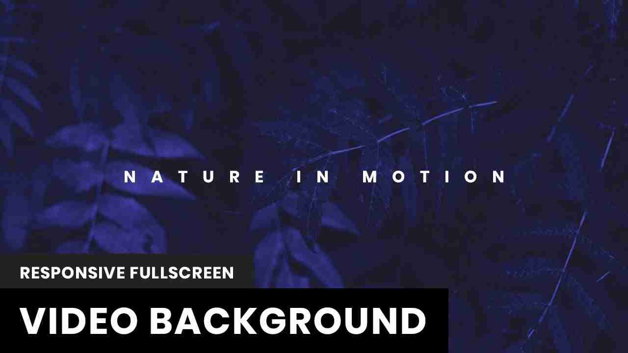 Responsive Fullscreen Video Background