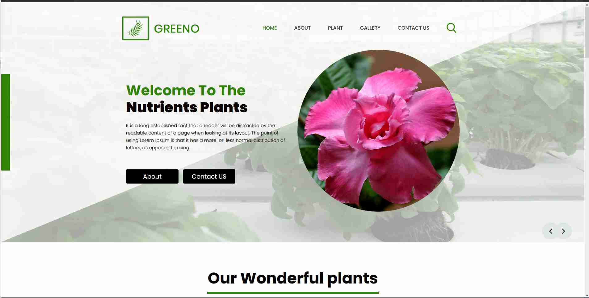 Website Template Design Using Html And CSS